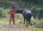 Cowgirl im Kathmandutal